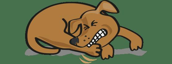 Cartoon dog itching.