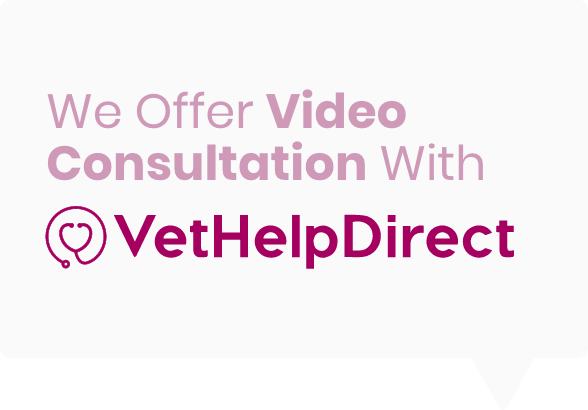 White message box with Vet Help Direct Logo