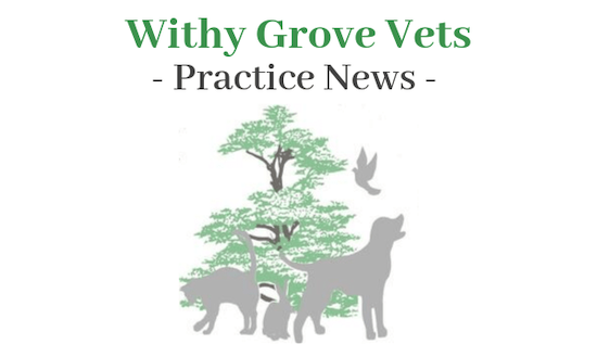 Withy Grove Vets news.
